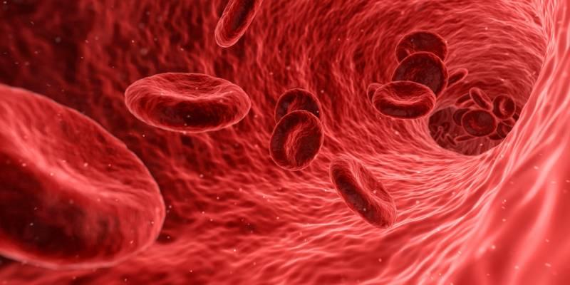 I valori ottimali del colesterolo nel sangue