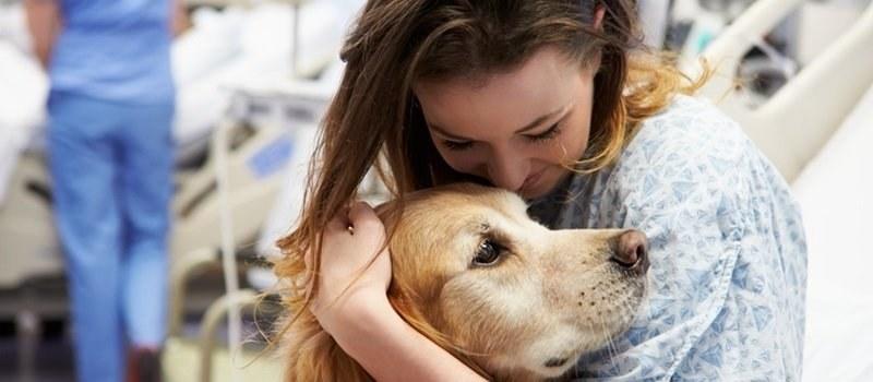 Cardiopatie e Pet Therapy: il nostro cane migliora la salute del nostro cuore